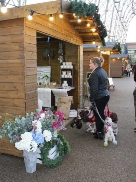 women with dogs at market place